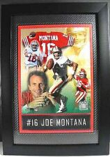 Joe Montana 16 San Francisco 49 Ers,High Quality Wall Picture,17 11/16in,Nfl