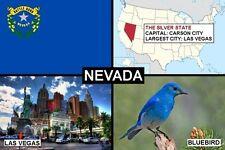 SOUVENIR FRIDGE MAGNET of THE STATE OF NEVADA USA