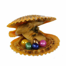 1pc Mini Monster! Red Scallop Akoya Oysters Five Round Pearls! Mixed Colors