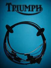 Triumph Cablaggio Telaio Testa Della Lampada Faro 71 72 T120 OIF PVC