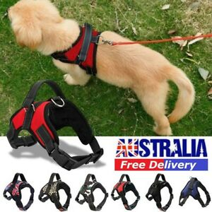 No-pull Dog Harness Pet Puppy Large Dog Vest Adjustable Padded Handle XS-XXL