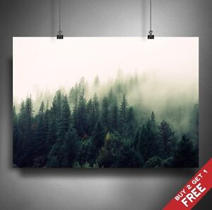 FOREST PINE TREES PHOTOGRAPHY POSTER A3 A4 * Wildlife Calm Retro Nature Wall Art
