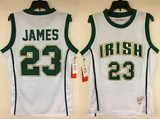 LeBron James 23 St Vincent-St Mary High School Irish Authentic Basketball Jersey