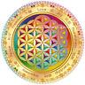 Blume des Lebens Fensterbild Runen Rainbow Sticker Heilige Geometrie Meditation