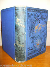 PAUL CLIFFORD HB BOOK DATED 1883 BY THE RIGHT HON. LORD LYTTON ILLUSTRATED