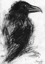 original drawing 15 x 21 cm 14X art by samovar Graphite raven 2019