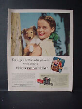 1953 Collie (?) Dog Puppy Ansco Color Camera Film Vintage Print Ad 11151