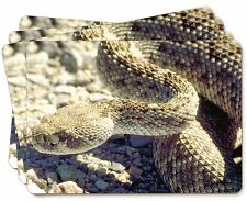 Rattle Snake Picture Placemats in Gift Box, AR-S2P