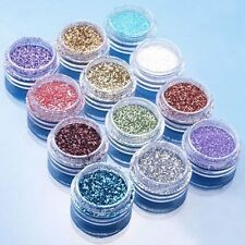 12pcs Color Glitter Dust Powder Tip Decoration Nail Art LW
