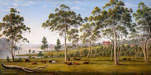 John Glover - Mr Robinson's house on the Derwent Van Diemen's Land, Canvas Print
