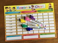 A4 Reward Chart Child Family Weekly Jobs Chores Whiteboard Fridge Magnet +2pensC
