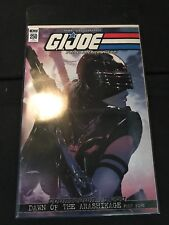 Joecon 2018 Gijoe A Real American Hero Comic Book Issue #250 Variant Cover Le500