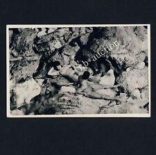 Nudism NUDE COUPLE ON THE ROCKS NACKTES PAAR IM FELS FKK * Vint 60s Secret Photo