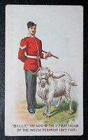 THE WELSH REGIMENT   Regimental Goat     Original 1911 Vintage Colour Card