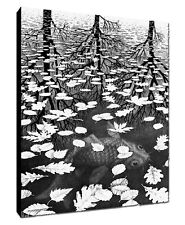 Quadro intelaiato pronto da appendere Escher 10  70x100 cm. Stampa  tela Canvas