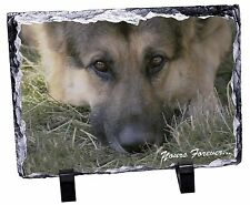 German Shepherd 'Yours Forever' Photo Slate Christmas Gift Ornament, AD-G43ySL