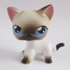 Littlest Pet Shop WHITE BLACK SIAMESE CAT #5 Blue Eyes   LPS Hasbro Authentic