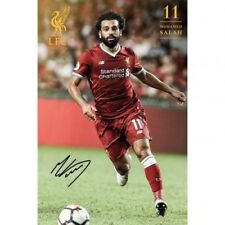 Liverpool Football Club Mo Salah 61cm x 91cm Wall Poster 22 Free UK P&P