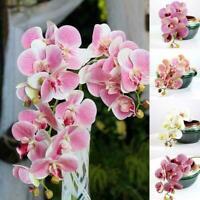 45CM Home Decor DIY Artificial Fake Silk Flower Phalaenopsis Orchid O6H3