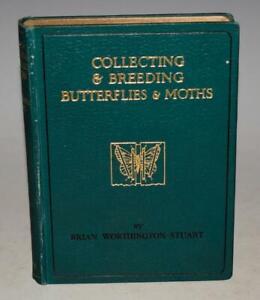 Wayside & Woodland WORTHINGTON-STUART Collecting & Breeding Butterflies & Moths