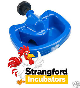 Maxicup Drinker - Automatic - for Poultry and Waterfowl (Plastic) (HCBC375)