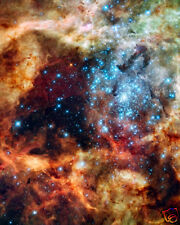 HUBBLE SPACE TELESCOPE IMAGE OF R136 CLUSTER 8X10 PHOTO
