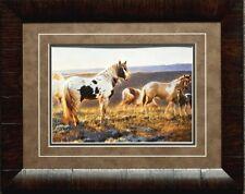 "Nancy Glazier"" Welcome the Dawn"" Horse Colt Art Print Framed"