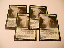 4x MTG Ricerca delle Terre Selvagge-Seek the Wilds Magic EDH BFZ Zendikar ITA x4