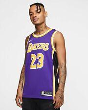 LeBron James Los Angeles Lakers Nike 2019/20 Away Statement Jersey - Purple