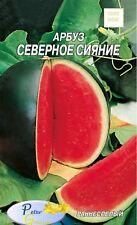Graines de melon d'eau Aurore polaire - Pastèque Aurore polaire -env 25  graines