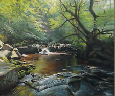 Riverside, Mallyan Spout, North Yorkshire. Original oil painting by John Cheall