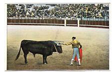 Matador Preparing To Kill Photo Postcard c1920's