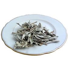 Dalimar Indianischer Weißer Salbei -  lose Blätter White Sage apiana weiß 40 g