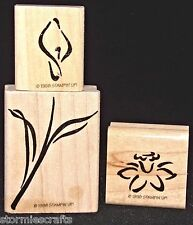 Flower Blossoms Leaves Rubber Stamp Single by Stampin Up A Wish for You