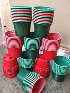"""100  9CM - 3.1/2""""  LIGHTWEIGHT PLASTIC PINE GREEN AND RED COLOUR PLANT POTS NEW"""