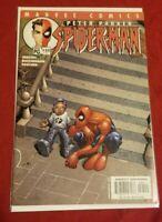 Peter Parker Spider-Man #35 (2001)🔑FIRST BLACK/AFRICAN AMERICAN SPIDER-MAN (NM)