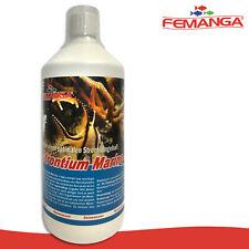 Femanga 1000 ml Strontium+Jod! Seewasser