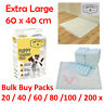 Dog Puppy Extra Large Training Pads Pad Wee Wee Floor Toilet Mats 60 x 40cm 200