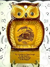 VINTAGE PORCELAIN PENNSYLVANIA DUTHC COUNTRY SPOON REST OWL JAPAN (W1-6)