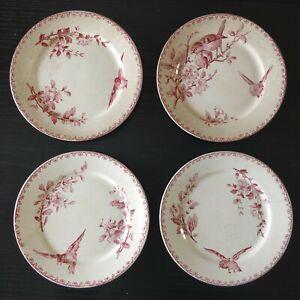 4 assiettes dessert anciennes DIGOIN Sarreguemines - FAVORI oiseau  21 cm