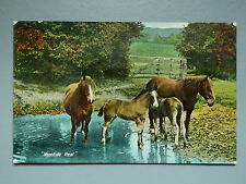 R&L Postcard: Noontide Heat, Rural Scene, Horses Ponies, Valentine's