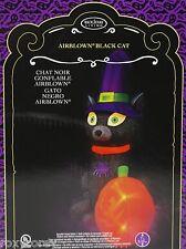 Halloween Gemmy Holiday Living 7 Ft Black Cat & Pumpkin Airblown Inflatable NIB