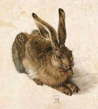 Hare By Albrecht Durer, Watercolour, Rabbit, Fridge Magnet