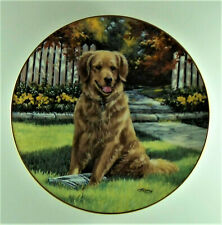 SPECIAL DELIVERY Plate Man's Best Friend Linda Picken Golden Retriever Hamilton