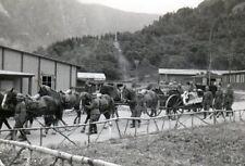 130518# Photo 2.wk Wehrmacht-Enterrement