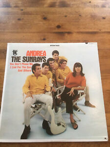 The Sunrays Andrea 1966 Surf LP Tower Records