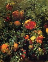Oil John Singer Sargent - Landscape nice plants - Pomegranates canvas