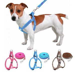 Step In Dog Harness and Leash Nylon Reflective Adjustable for Small Large Dogs