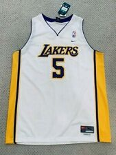 Nike Los Angeles Lakers Robert Horry Swingman Jersey - White XL NWT