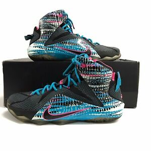 Nike Lebron XII 12 Men Basketball Shoes Size 11 684593-006 Black Pink Lagoon